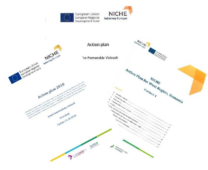 Implementation of Action Plans in NICHE Regions